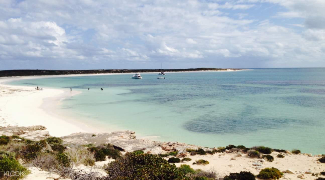 珀斯西澳粉红湖 & 阿布洛霍斯群岛一日游